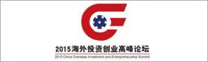 2015-china-investment
